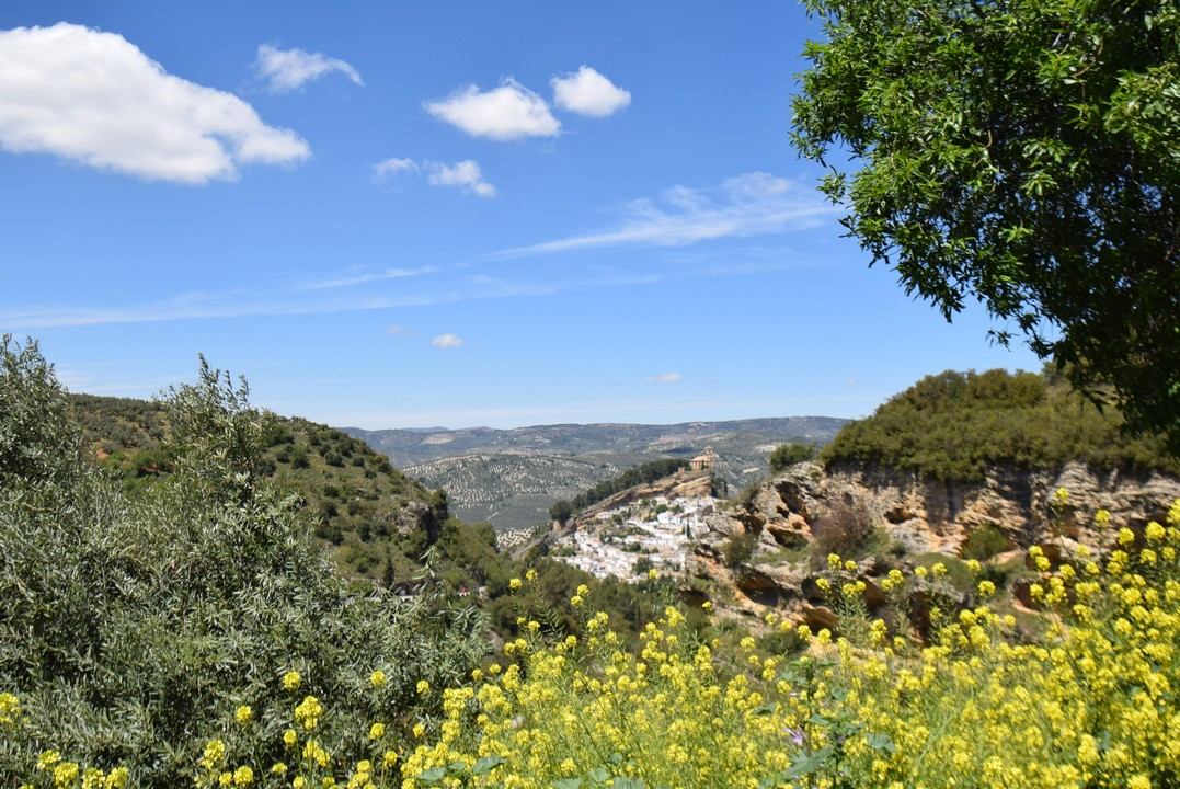 MONTEFRÍO UNIQUE  9 BEDROOM 10 BATHROOM ANDALUCIAN COUNTRY HOUSE WITH SPECTACULAR VIEWS